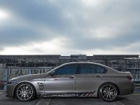 2014 Fostla BMW 550i F10, 2 of 18