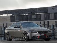 2014 Fostla BMW 550i F10, 6 of 18