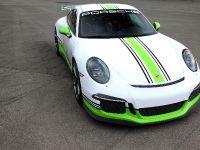 2014 Fostla.de Porsche 991 GT3 , 1 of 10