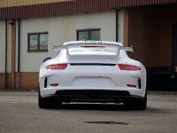2014 Fostla.de Porsche 991 GT3 , 5 of 10