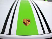 2014 Fostla.de Porsche 991 GT3 , 10 of 10