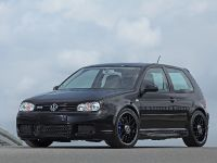 2014 HPerformance Volkswagen Golf IV, 3 of 15