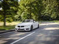2014 KW BMW F33 Convertible, 2 of 13