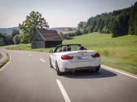 2014 KW BMW F33 Convertible, 5 of 13