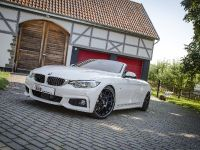 2014 KW BMW F33 Convertible, 6 of 13