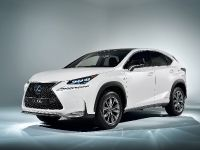 2014 Lexus NX 300h Sports Luxury, 3 of 42
