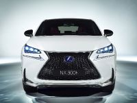 2014 Lexus NX 300h Sports Luxury, 4 of 42