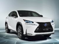 2014 Lexus NX 300h Sports Luxury, 5 of 42
