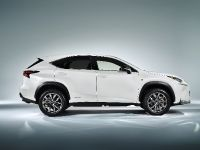 2014 Lexus NX 300h Sports Luxury, 6 of 42