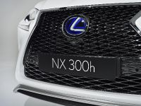 2014 Lexus NX 300h Sports Luxury, 10 of 42