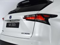 2014 Lexus NX 300h Sports Luxury, 15 of 42