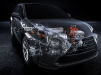 2014 Lexus NX 300h Sports Luxury, 22 of 42