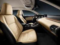 2014 Lexus NX 300h Sports Luxury, 28 of 42