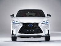 2014 Lexus NX, 1 of 3
