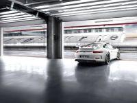 2014 Porsche 911 GT3 , 15 of 25