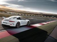 2014 Porsche 911 GT3 , 18 of 25