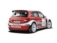 2014 Skoda Fabia Super 2000, 3 of 6