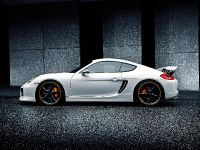 2014 Techart Porsche Cayman, 1 of 6