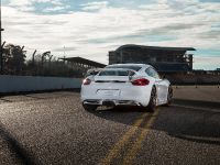 2014 Techart Porsche Cayman, 5 of 6