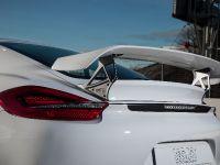 2014 Techart Porsche Cayman, 6 of 6
