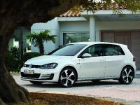 2014 Volkswagen Golf GTI, 5 of 31