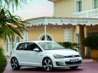 2014 Volkswagen Golf GTI, 15 of 31