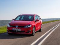 2014 Volkswagen Golf VII Variant, 3 of 12