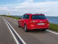 2014 Volkswagen Golf VII Variant, 4 of 12