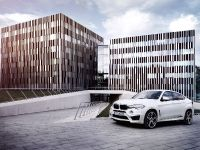 2015 AC Schnitzer BMW X6 M , 3 of 15