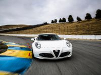 2015 Alfa Romeo 4C US-Spec, 114 of 167