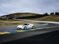 2015 Alfa Romeo 4C US-Spec, 123 of 167