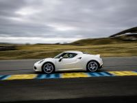 2015 Alfa Romeo 4C US-Spec, 125 of 167