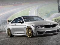 2015 Alpha-N Performance BMW M4, 3 of 8