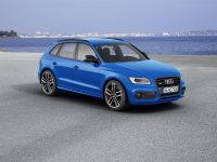 2015 Audi SQ5 TDI Plus, 4 of 11