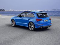 2015 Audi SQ5 TDI Plus, 8 of 11