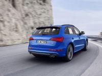 2015 Audi SQ5 TDI Plus, 9 of 11