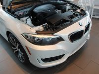 2015 BMW 2-Series 228i Coupe Track Handling Package, 9 of 12