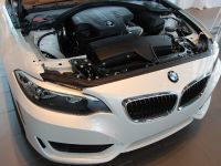 2015 BMW 2-Series 228i Coupe Track Handling Package, 10 of 12