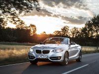2015 BMW 2 Series Convertible, 6 of 71