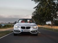 2015 BMW 2 Series Convertible, 8 of 71