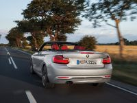 2015 BMW 2 Series Convertible, 13 of 71