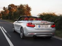 2015 BMW 2 Series Convertible, 14 of 71