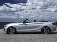 2015 BMW 2 Series Convertible, 16 of 71