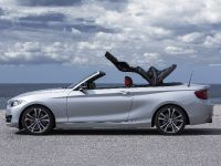 2015 BMW 2 Series Convertible, 19 of 71