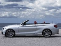 2015 BMW 2 Series Convertible, 22 of 71
