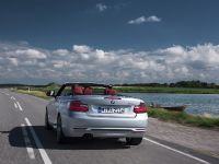 2015 BMW 2 Series Convertible, 23 of 71
