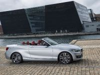 2015 BMW 2 Series Convertible, 24 of 71