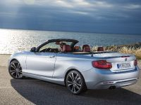 2015 BMW 2 Series Convertible, 29 of 71