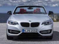 2015 BMW 2 Series Convertible, 30 of 71