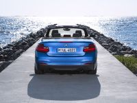 2015 BMW 2 Series Convertible, 55 of 71